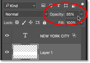 Layer opacity option in Layers panel in Photoshop