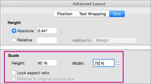 On the Size tab in the Advanced Layout box, the Scale options are highlighted.